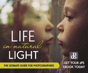Life in Natural Light: The Ultimate Guide for Photographers